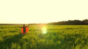 Das Kind im Kostüm eines Superhelden in einem roten Mantel steht im grünen Rasen gegen den Hintergrund des Sonnenuntergangs stock footage