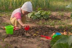 Das Kind setzt Frühlingszwiebeln Lizenzfreie Stockbilder
