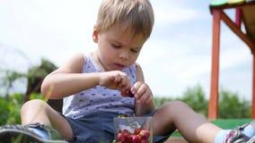 Das Kind sitzt auf dem Rasen und isst die roten Beeren Gartenbeeren Victoria stock footage