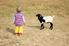 Das Kind spielt mit einer Ziege lizenzfreie stockfotografie