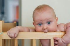 Das kleine Baby, das im Feldbett versandet und isst Geländer stockfotografie