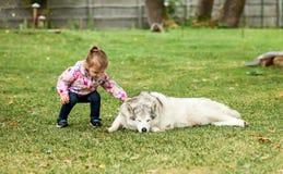 Das kleine Baby, das mit Hund gegen grünes Gras spielt Stockbilder