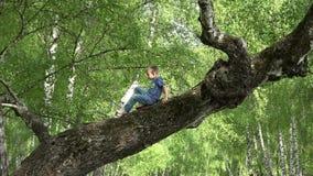 Das kleine Kind, das oben im Suppengrün im Wald klettert, Kind stehen oben auf Baumast, tapfere Kindheit stock footage