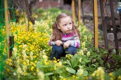 Das kleine Mädchen, das in den gelben Blumen arbeiten sitzt im Frühjahr im Garten Stockbild