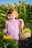 Das kleine Mädchen in den Sonnenblumen Stockfotografie