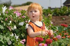 Das kleine Mädchen in einem Dickicht der Blumen Lizenzfreie Stockbilder