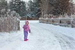 Das kleine Mädchen geht in Winterschneewald auf der Straße Stockbilder