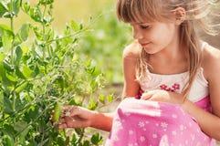Das kleine Mädchen im Garten Stockbilder