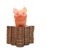 Das kleine Schwein schützt Ihr Geld Stockfotos