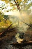 Das Kochen essen im Werfer auf dem Feuer Junge Erwachsene Stockfoto