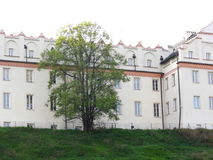 Das Kollegium Gostomianum Stockfotografie