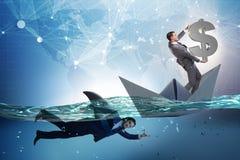 Das Konzept der Gesch?ftsm?nner in Konkurrenz mit Haifisch stockbilder