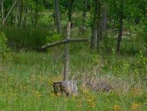 das Kreuz im Wald Stockfotografie
