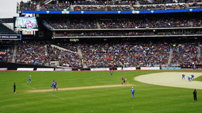Das 2015 Kricket-Gesamt-Stern-Match in New York Lizenzfreies Stockbild