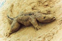 das Krokodil, das vom Sand auf dem Strand gemacht wird, schaut sehr realistisch Lizenzfreies Stockfoto