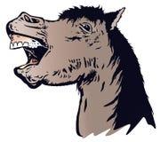 Das lachende Pferd Stockfoto