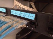 Das LAN-Kabel Stockfoto