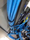 Das LAN-Kabel Lizenzfreie Stockfotos