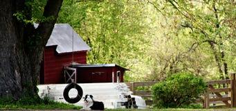 Das Landleben Stockfotografie