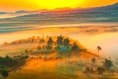 Das Landschaftsfoto, das Baumschattenbild und das Meer nebeln während des Morgens ein Stockfoto