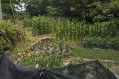 Das Landwirt ` s Haus vor dem Haus Stockfotos
