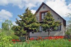 Das landwirtschaftliche Haus und die Tulpen stockfotos