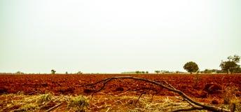 Das landwirtschaftliche Land Stockbild