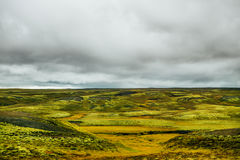 Das Lavafeld bei Eldhraun, Island Lavaforderungen durchgesetzt mit grünem schwammigem Moos Ungewöhnliche Natur Nördlicher Polarkr Stockfotos