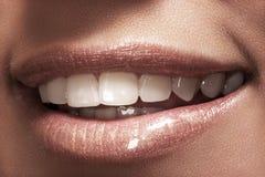 Das Lächeln der makro glücklichen Frau mit den gesunden weißen Zähnen Stockfotografie