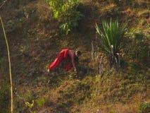 Das Leben der Einheimischen Stockbilder