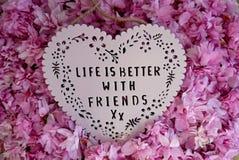 Das Leben ist mit Freunden besser lizenzfreies stockfoto