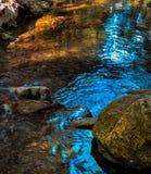 Das Leben um den Fluss in sieben Frühlinge parken in Rhodos stockbilder