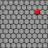 Das letzte (erste) Zellschwarze Lizenzfreies Stockbild