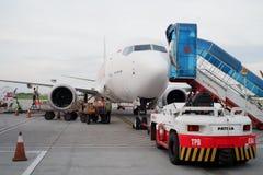 Das Lion Air lizenzfreie stockfotografie