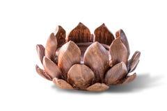 Das Lotos geschnitzte Holz Getrennt auf weißem Hintergrund Lizenzfreie Stockfotografie