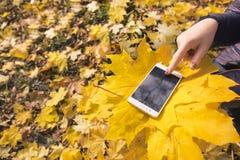 Das Mädchen benutzt Telefon im Herbstpark stockfoto