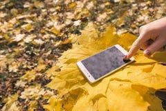 Das Mädchen benutzt Telefon im Herbstpark stockfotografie