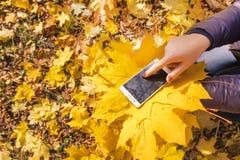 Das Mädchen benutzt Telefon im Herbstpark lizenzfreies stockfoto