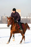Das Mädchen, das der Reiter auf einem Pferd überspringt lizenzfreie stockbilder