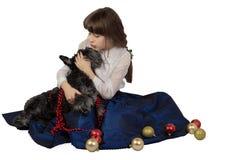 Das Mädchen, das mit Weihnachtsdekorationen umgeben wird, küsst einen Hund, Zwergschnauzer Lizenzfreie Stockbilder