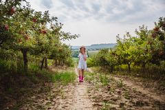 Das Mädchen in den Hut- und Regenstiefelwegen und isst süßen Apfel im Apfelgarten stockfoto