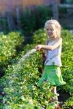 Das Mädchen in einem Gemüsegarten Stockfoto