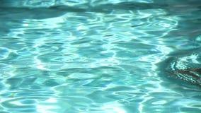 Das Mädchen in einem Swimmingpool stock footage
