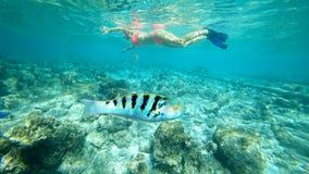 Das Mädchen in einer Maske unter Wasser der Indische Ozean mit Korallen und Fischen lizenzfreie stockbilder