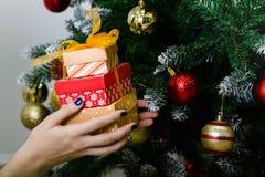 Das Mädchen empfing Geschenke am Vorabend des neuen Jahres unter dem Feiertagsbaum stockfotos