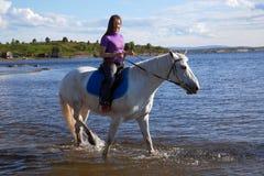 Das Mädchen führte das Pferd zu schwimmen Lizenzfreie Stockfotos