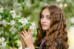 Das Mädchen im Apfelobstgarten Stockfoto