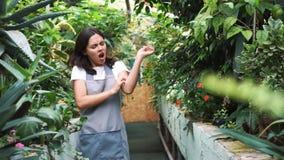Das Mädchen im Gewächshaus im Schutzblech, itching von den Blütenstaubanlagen Allergisch zu den Blumen stock video