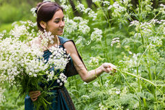 Das Mädchen im Kleid erfasst Blumen Lizenzfreies Stockbild