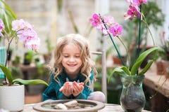 Das Mädchen im Orchideengewächshaus wird mit Blumen und Steinen gespielt Mädchen mit blühenden Orchideen hält Steine stockfoto